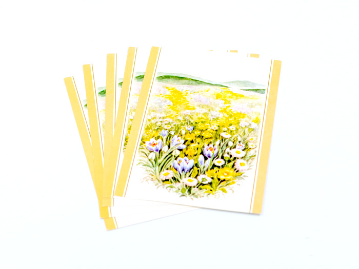 Vykort 5-p, gul blomster